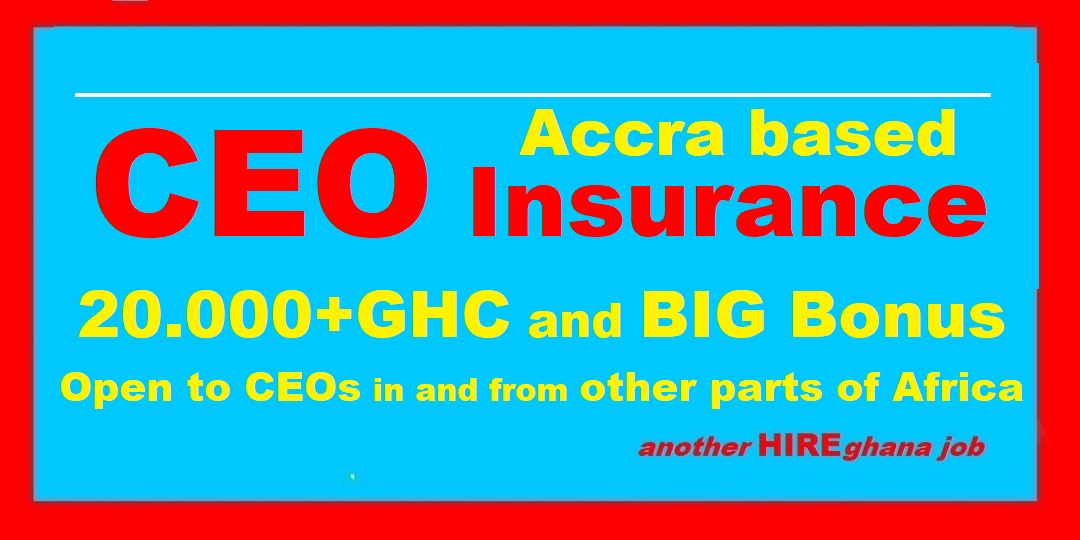 CEO for Insurance Company